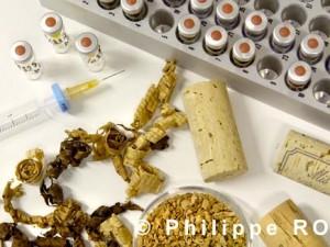 Préparation d'échantillon de liège et de bois pour chromatographie.
